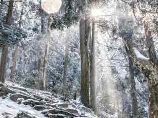 庐山唯美好看的雪景桌面壁纸