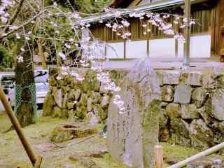 古都奈良县吉野山