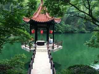 绿色护眼的宜兴竹海河流桌面壁纸
