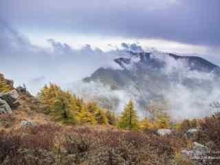 雾灵山壮观雾景桌面壁纸