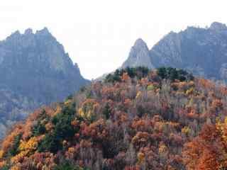壮观的秋日雾灵山景色图片