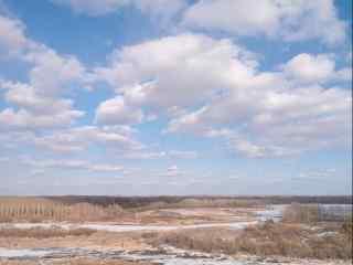 蓝天白云下一望无际的黑龙江图片