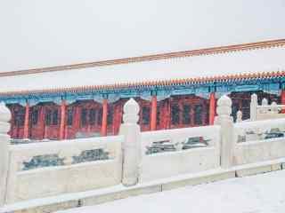 漫天的大雪飘落在故宫桌面壁纸