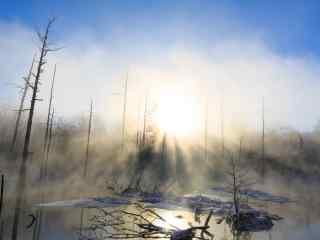清晨阳光穿透长白山桌面壁纸