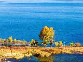 泸沽湖小清新风景