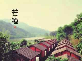 芒种节气之唯美风景壁纸