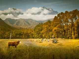 唯美的毕业旅行地青海风景壁纸