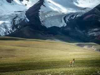 毕业旅行地之西藏风景壁纸