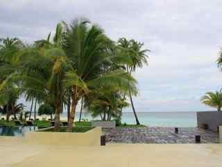 海边风景之椰林桌面壁纸
