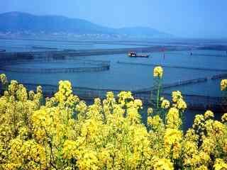 美丽的苏州太湖风景壁纸