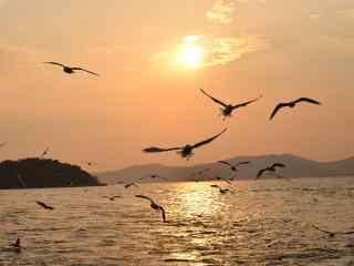 美丽的太湖夕阳风景桌面壁纸