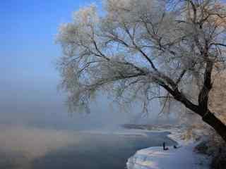 吉林雾凇风景美丽桌面壁纸