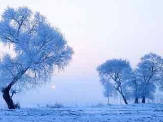 吉林雾凇风景唯美桌面壁纸