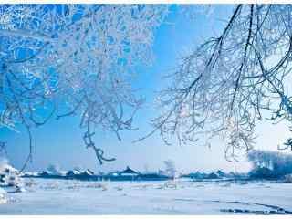 吉林雾凇高清风景壁纸
