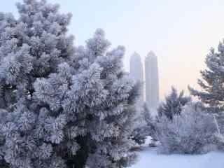 美丽的吉林雾凇风景壁纸