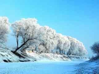 吉林雾凇小清新风景壁纸