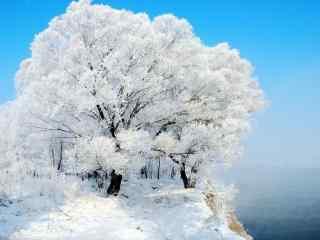 吉林雾凇风景高清桌面壁纸