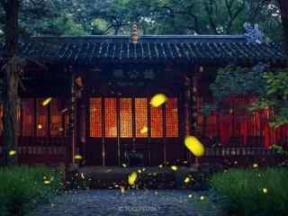 南京夏日萤火虫唯美风景壁纸