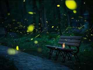 唯美的夜晚萤火虫飞舞风景桌面壁纸