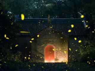南京灵谷寺夏日萤火虫风景壁纸