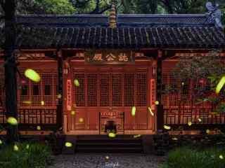 南京夏日萤火虫风景壁纸