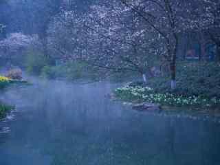 唯美的烟雨江南风景图片