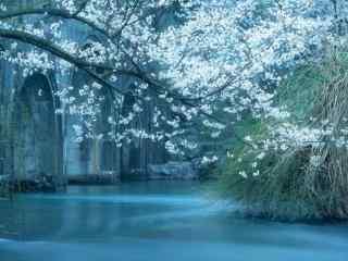 唯美朦胧的烟雨江南风景图片