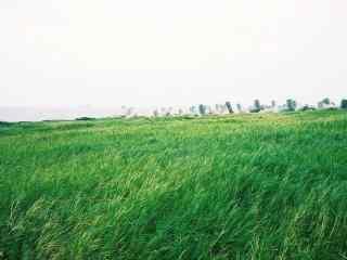 绿色台湾垦丁风景壁纸