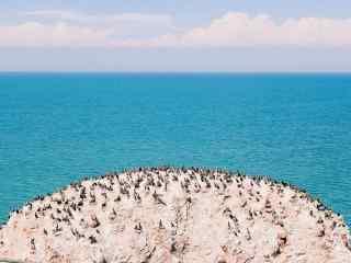 青海湖蓝天唯美桌面壁纸