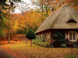 秋日山林中小木屋风景壁纸