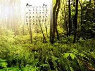 2017年8月日历绿色护眼风景壁纸