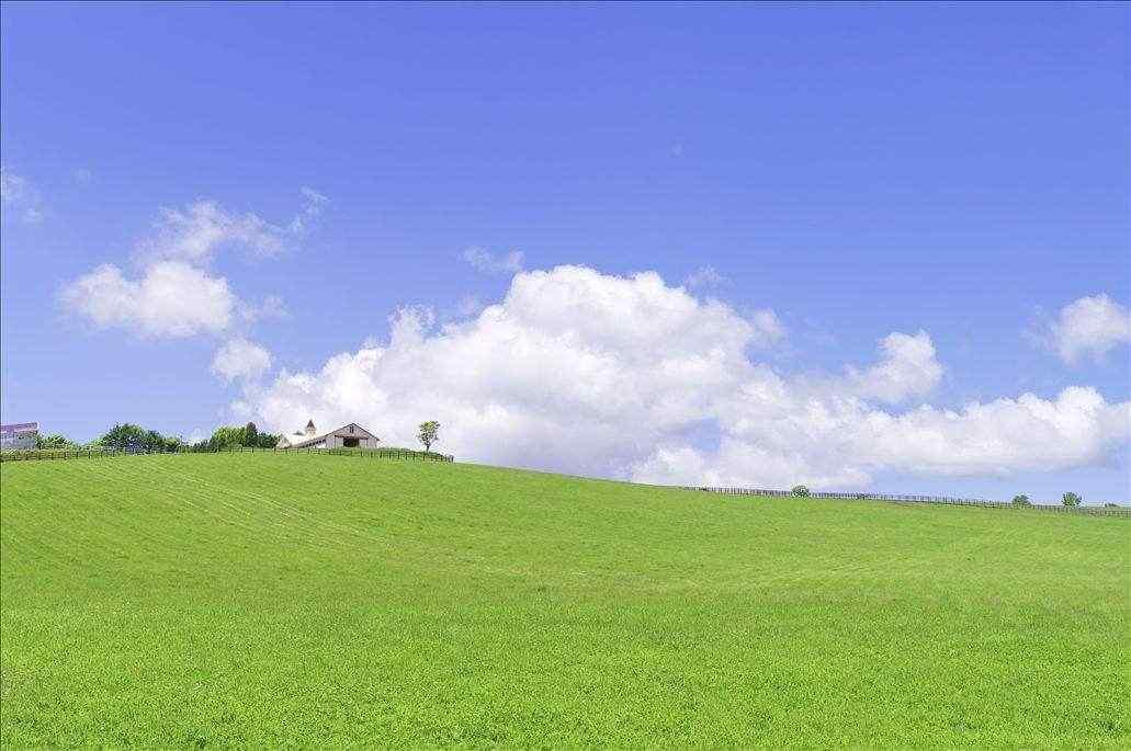 绿色清新山坡风景桌面壁纸
