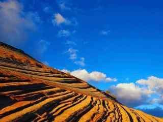藍天白雲之下的(de)山坡風景(jing)壁紙