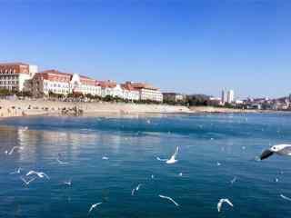 夏日避暑城市之青岛海边风景