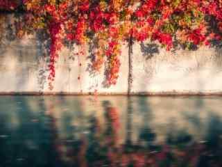 立秋之美丽风景壁纸