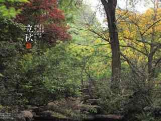 立秋美丽风景桌面壁纸