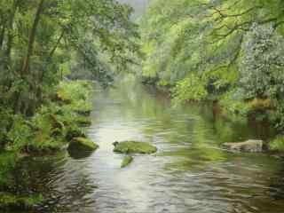 夏日清凉小清新森林风景壁纸