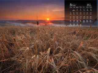 2017年8月日历黄昏下的草原风景壁纸