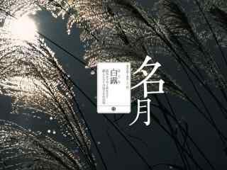 2017白露节气夜景桌面壁纸
