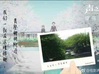 电影声之形美登鲤桥附近风景壁纸