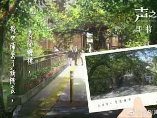电影声之形美登鲤桥风景壁纸