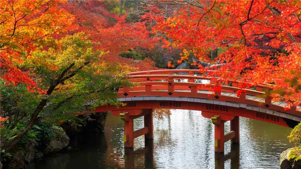 深秋唯美风景图片壁纸