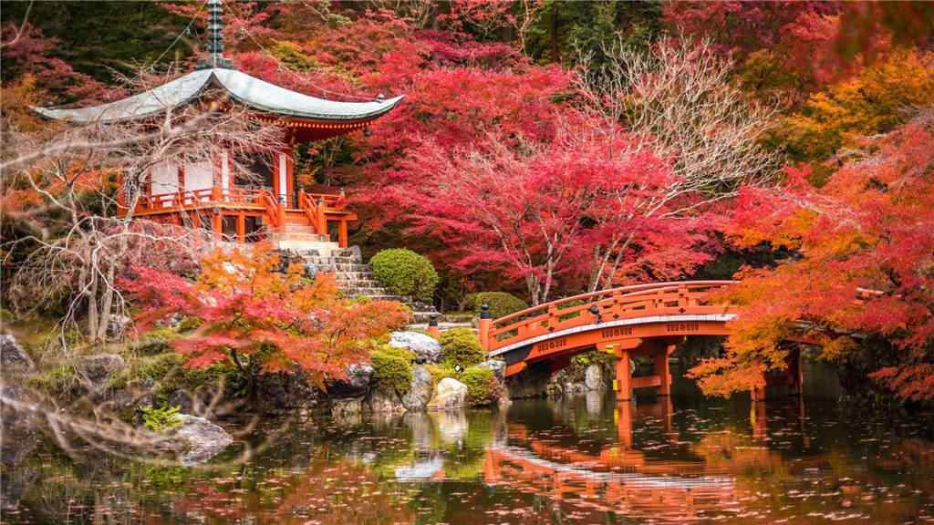 秋日童话般的风景桌面壁纸