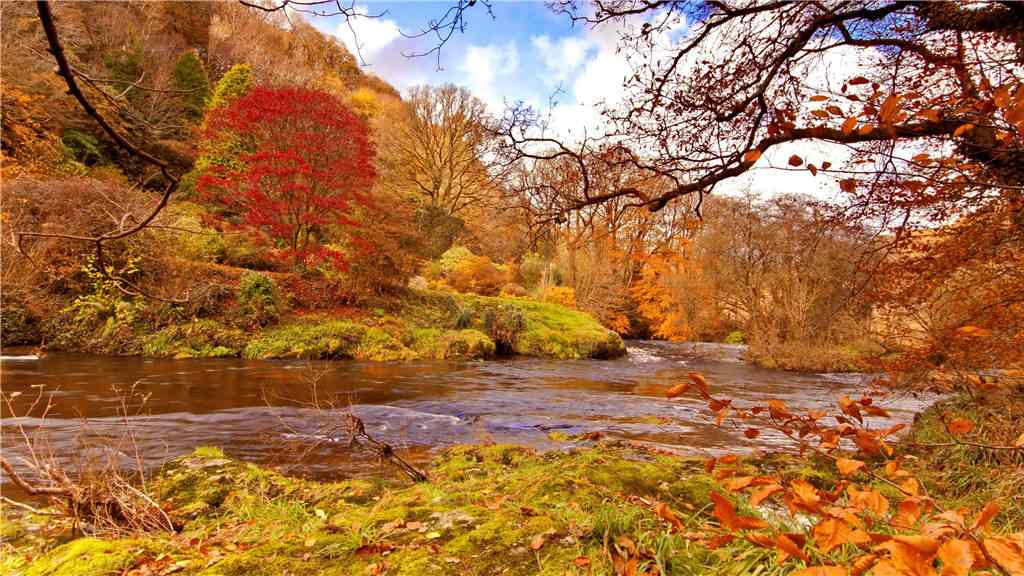 秋意浓之秋日风景桌面壁纸