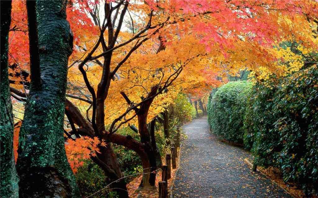 好看的秋日山间风景壁纸