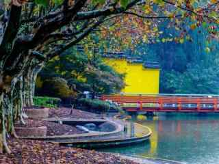 美麗的秋日風景壁(bi)紙