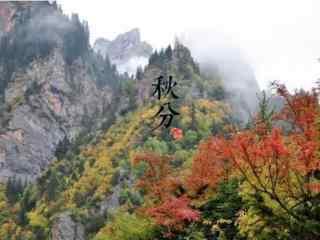 节气之秋分风景桌面壁纸