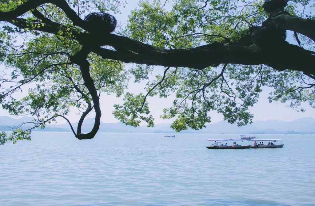 小清新西湖风景护眼桌面壁纸