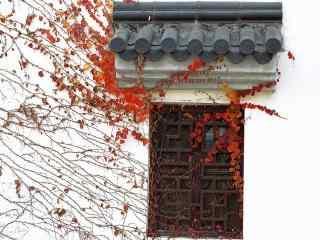 秋日文艺风景电脑桌面壁纸