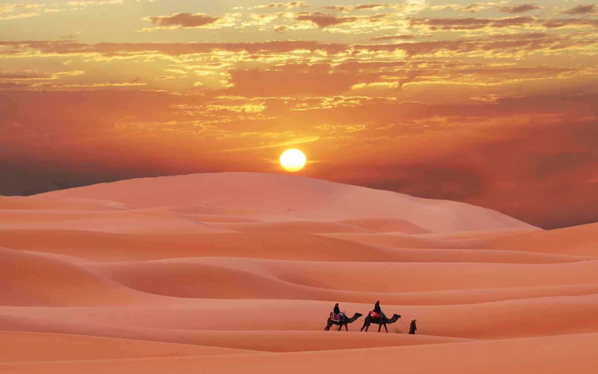 热带沙漠风景图片桌面壁纸
